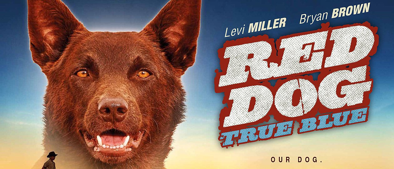 OUTDOOR MOVIES: Red Dog